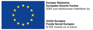 FSE Oficial